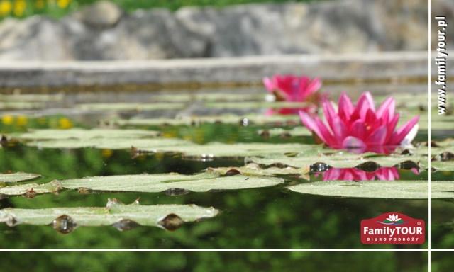 Wiosna - wypoczynek i regeneracja